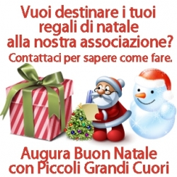Regali Di Natale Onlus.Destinare I Tuoi Regali Di Natale All Associazione News Piccoli